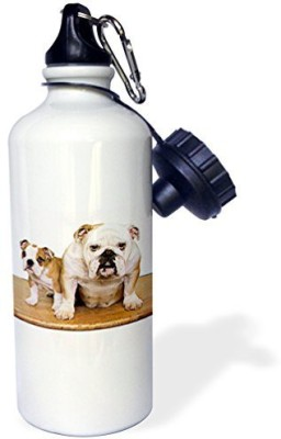 3dRose 621 ml Water Purifier Bottle(White)