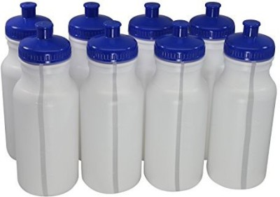Pinnacle Mercantile 591 ml Water Purifier Bottle