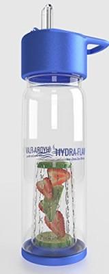 JoeJac Bros. 739 ml Water Purifier Bottle