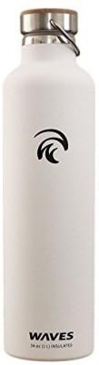 Waves Gear 1000 ml Water Purifier Bottle