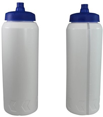Pinnacle Mercantile 946 ml Water Purifier Bottle