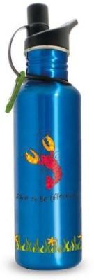 Cape Shore 798 ml Water Purifier Bottle