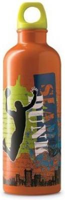 Crocodile Creek 946 ml Water Purifier Bottle