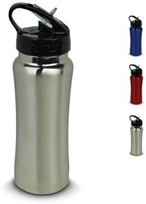 StayActive 680 ml Water Purifier Bottle