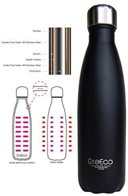 GreEco 500 ml Water Purifier Bottle
