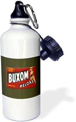 3dRose 621 ml Water Purifier Bottle