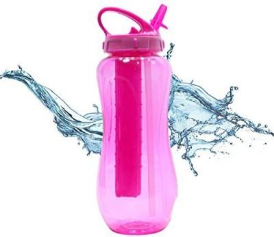 Cool Gear 946 ml Water Purifier Bottle(Pink)