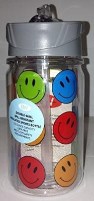 Boston Warehouse 296 ml Water Purifier Bottle