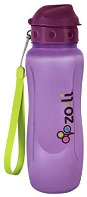 ZoLi 739 ml Water Purifier Bottle
