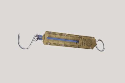 Rajhans Pocket25 Kg Weighing Scale